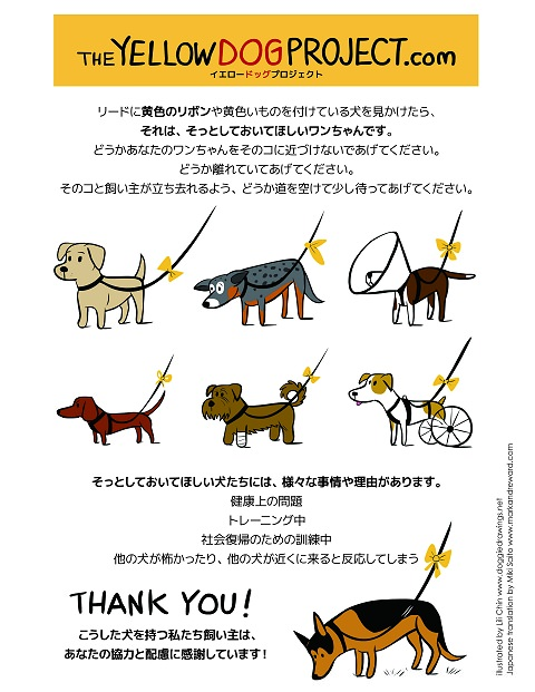 ↑ THE YELLOW DOG PROJECT.com