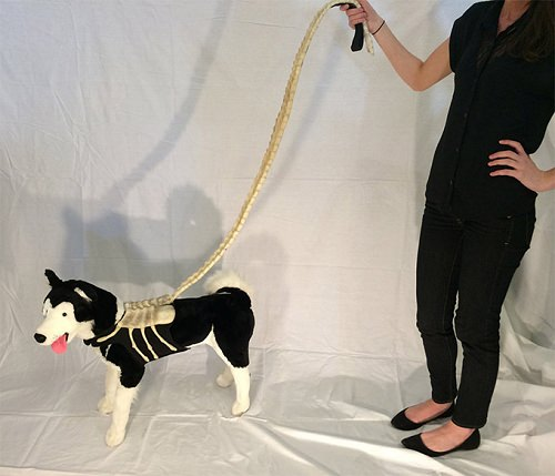 ↑ Alien Facehugger Dog Leash